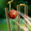 Cricket taps bowling technology – iPad