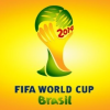 Join the 2014 FIFA World Cup Fever with Amazon.in