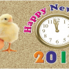 TheSportsMirror.com wishes you a Happy New Year 2016!