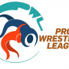 Sony SIX to telecast the Pro Wrestling League 2015 Live from 10th December 2015