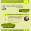 Did You Know? 5 fun facts about Golf