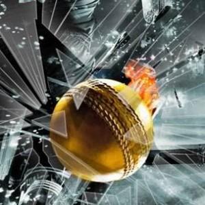 IPL 4 - Emerging Stars