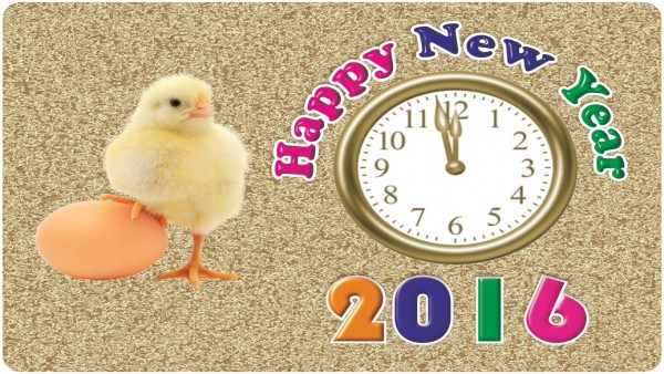 The Sports Mirror wishes you a Happy New Year 2016!